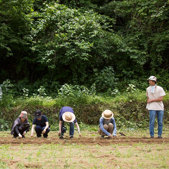 DAYZ.の農業体験 2018 #01『自然豊かな里山で大豆を蒔く』